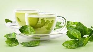 trà xanh tốt cho sức khỏe